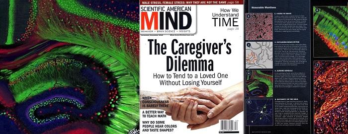 Article Scientific American Couverture – Copie – Copie
